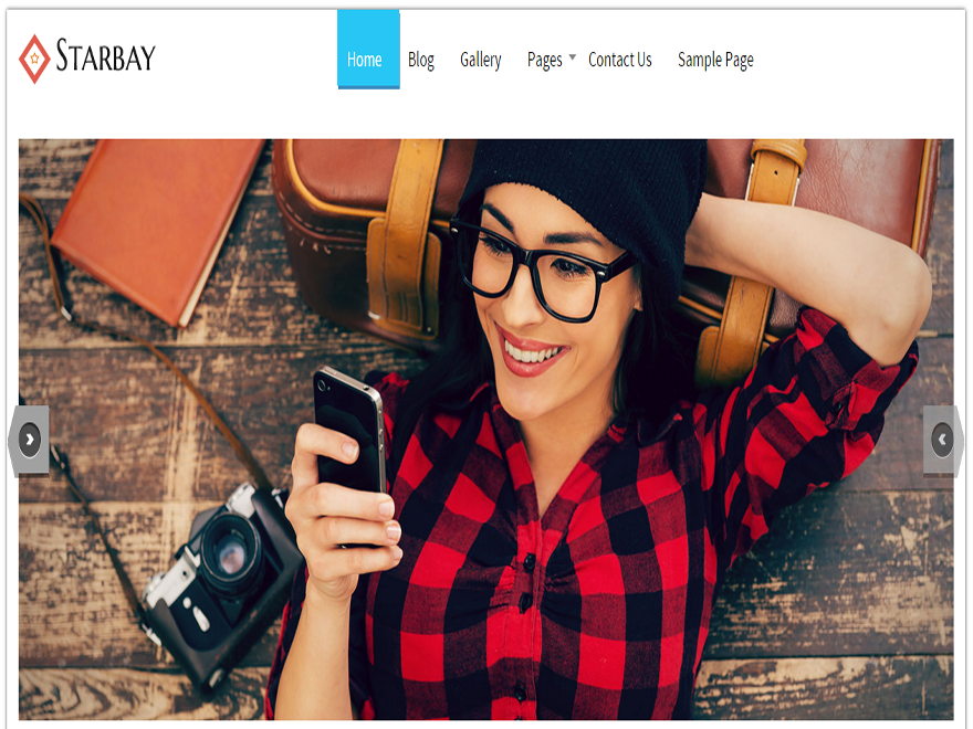 StarBay Wordpress Theme